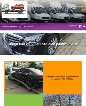 user site antontsvetkov370